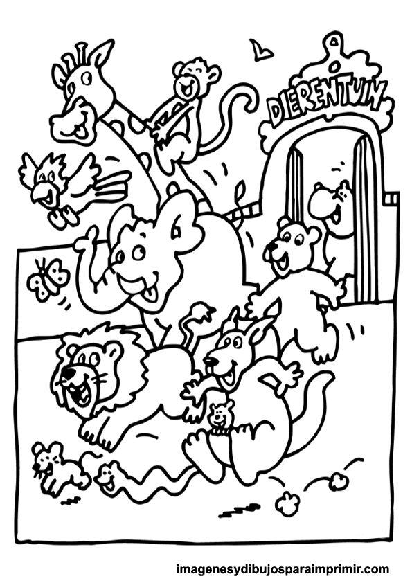Imagenes Para Colorear De Animales Del Zoologico Dibujos infantiles ...