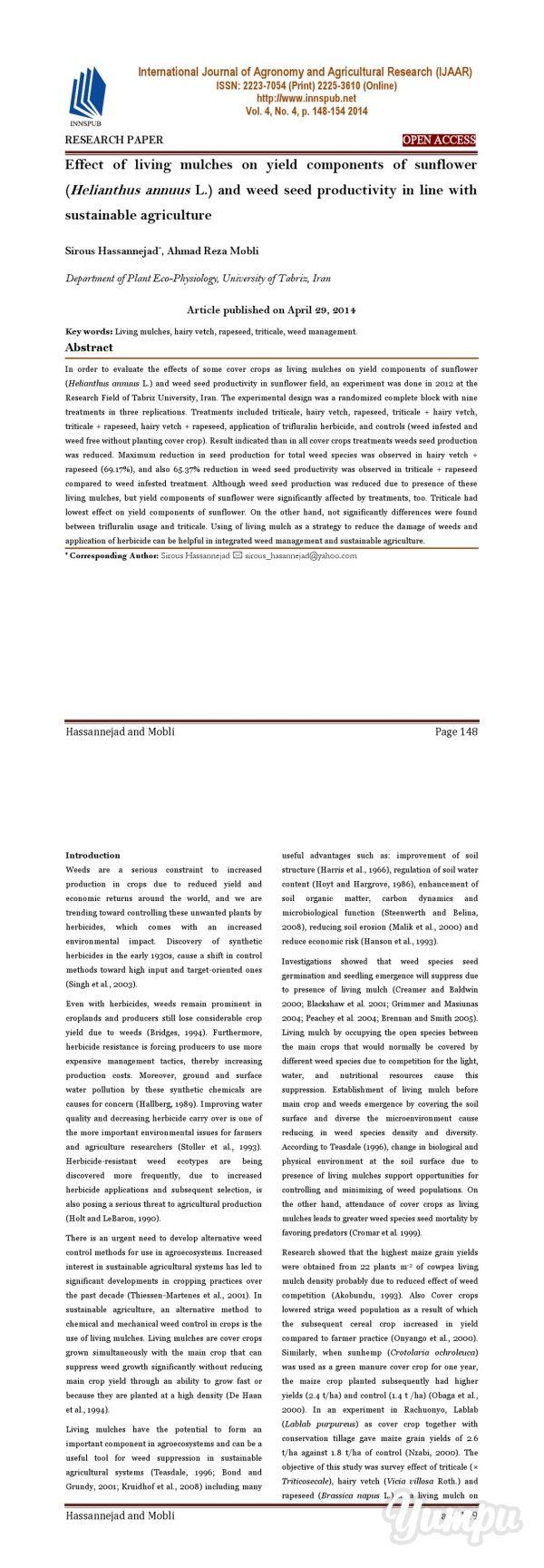 essay philosophical remembering socrates