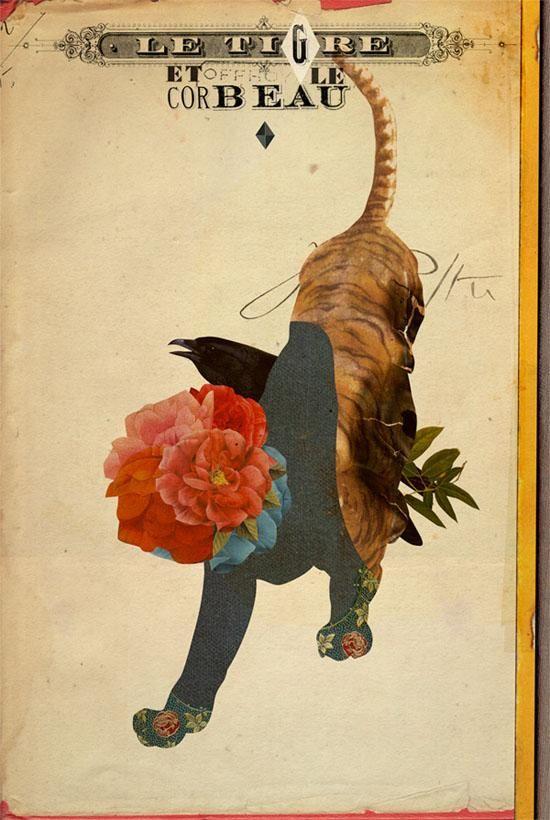 Illustrations - Emmanuel Polanco