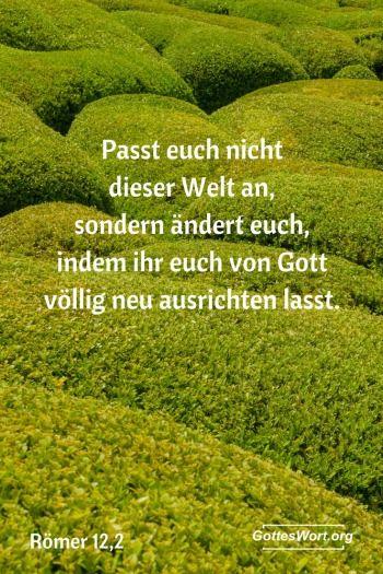 Es gibt einige Dinge die wir tun können, die es möglich machen in Gottes Königreich gut und wirkungsvoll aufzuwachsen. http://www.gottes-wort.com/erste-schritte.html
