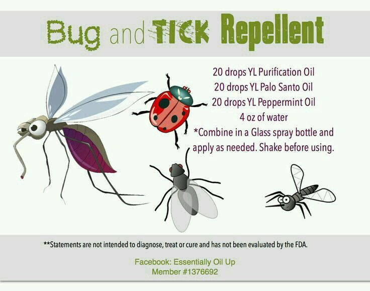 Diy Bug Amp Tick Repellent With Essential Oils Yl