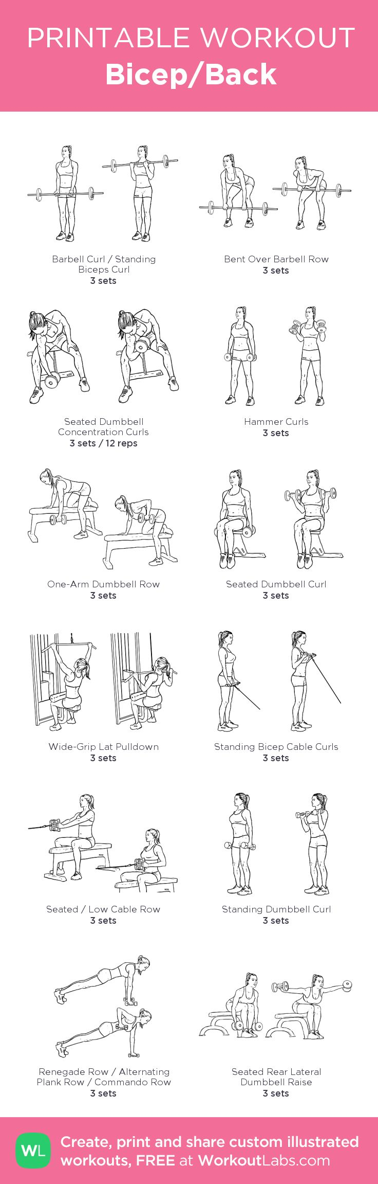Bicep/Back –my custom workout created at WorkoutLabs.com • Click through to download as printable PDF! #customworkout