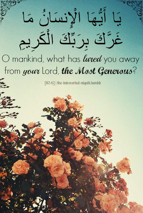 17 Best Images About Reminders From Al Quran On Pinterest