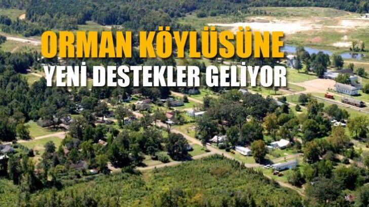 Orman Köylüsüne Yeni Destekler Geliyor