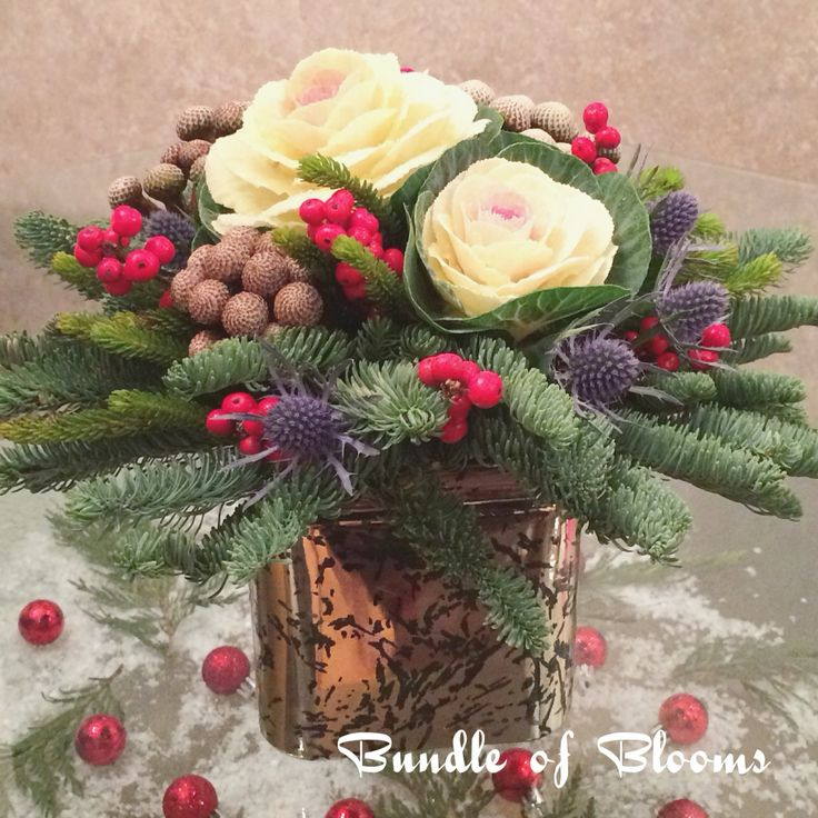 Gift for him with kales, blue thistles, silver brunia and red berries.
