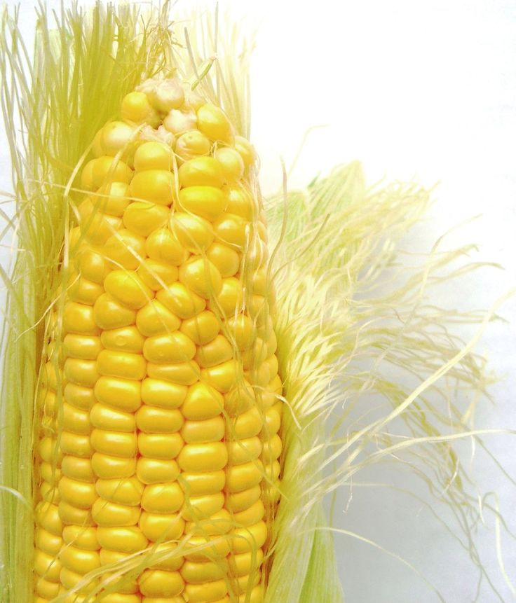 CORN!  The best time to eat corn on the cob is middle to late summer.  Look for a husk that's firm, fresh, and green-looking. Don't strip it; just look at the tassel or silk. On really fresh corn, the tassel will be pale and silky, with only a little brown at the top, where it's been discolored by the sun. Also try holding the ear in your hand: if it's warm, it's starting to turn to starch; if it's still cool, it's probably fresh.