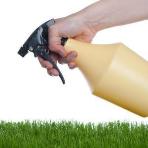 Comment fabriquer son propre insecticide naturel