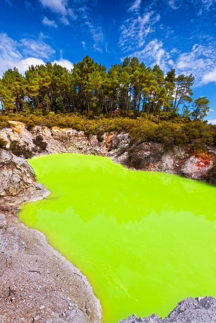 The Green Pool Wai-O-Tapu, Rotorua, New Zealand. What??