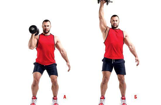 Швунг — базовое упражнение, взятое из тяжелой атлетики, а с одной рукой очень сложное в техническом плане. Многие пытаются начинать выполнять тренировки в обычном жиме, и иногда это очень опасно, чем в читинговании швунга. Примите исходное положение прямо, ноги на ширине плеч должны находиться или немного шире, затем охватите штангу. Не прогибая спину на передние дельты ложите гриф штанги. Локти должны быть впереди, в этом случает плечи должны контролировать положение вашей спины. Когда вы…