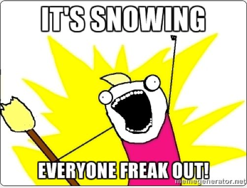 It's snowing everyone freak out! all the things meme