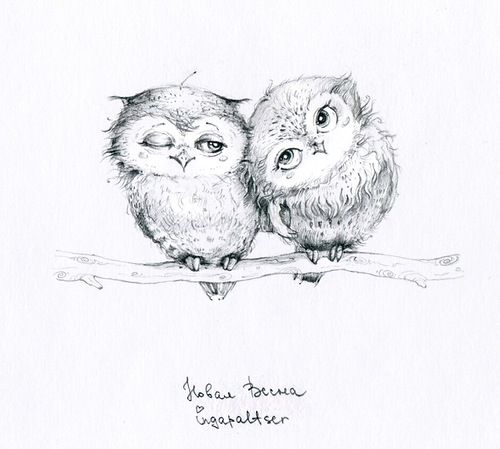 possible baby owls