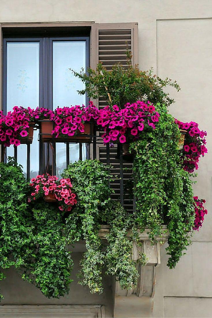 40 Window and Balcony Flower Box Ideas  PHOTOS. Best 25  Balcony garden ideas on Pinterest   Small balcony garden