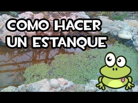 Las 25 mejores ideas sobre peque os estanques en for Estanques pequenos para tortugas