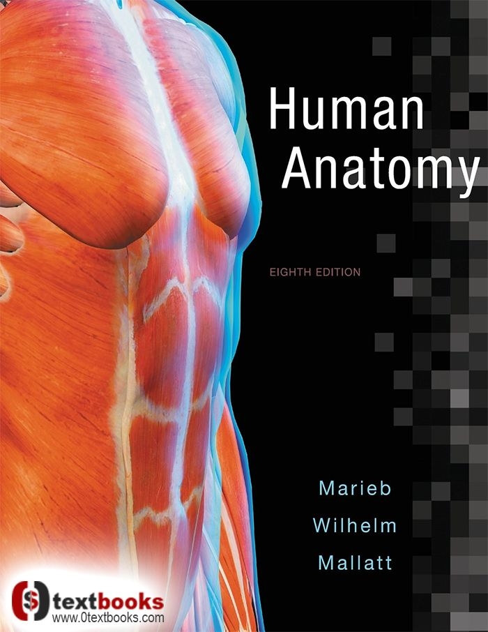 Human Anatomy 8th Edition By Marieb And Wilhelm Pdf Free Download