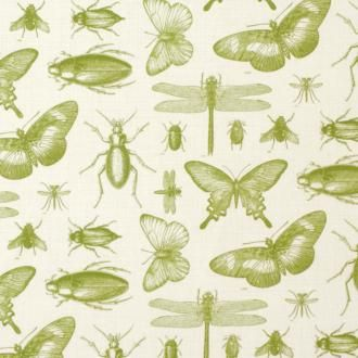 Cut Length of Entomology in Green, made by Jim Lawrence