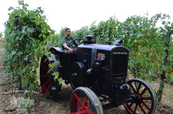 Trattore storico tra le vigne
