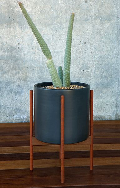 Modernica Case Study Hex with Wood Stand    ceramic  planter