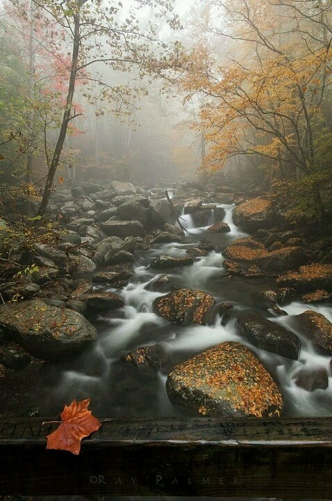 Serenity Great smoky mountains, Beautiful places, Autumn