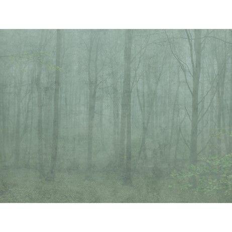 Sandbergs tyg & tapeter Vinterskog Grön