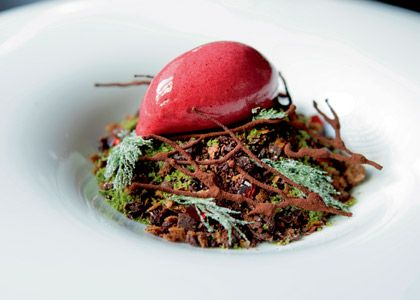 Chocolate Forest Floor from Sepia   Where do I start? A smooth sour cherry sorbet sits on a bed of dark chocolate twigs, crystallised fennel fronds and cherry brandy jellies, on a 'ground' of chocolate soil crumb, aniseed praline and green tea moss, over a 'sub-soil' of lavender custard, praline and chestnut cream, and soft chocolate mousse. It's like walking through a woodlands glade, snapping twigs underfoot - only in your mouth.