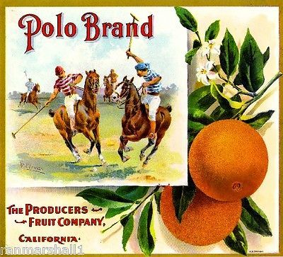 Riverside Polo Horse Horses Orange Citrus Fruit Crate Label Art Print