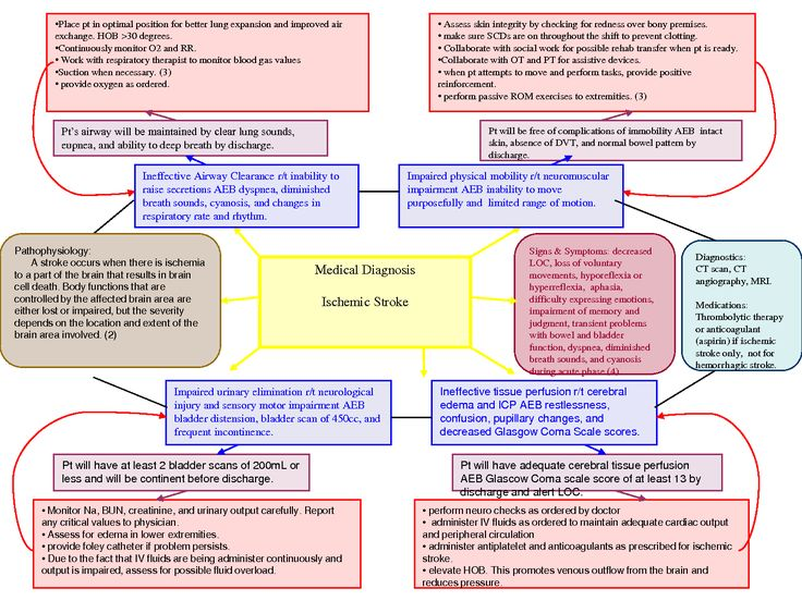 nursing concept map sop example