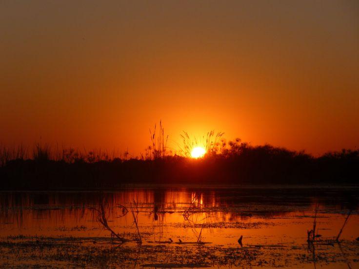 Sunset Okavango Delta, Botswana