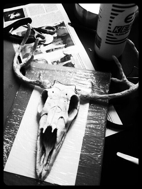 Sculpting on progress. Deer skull and antlers. Faux taxidermy.