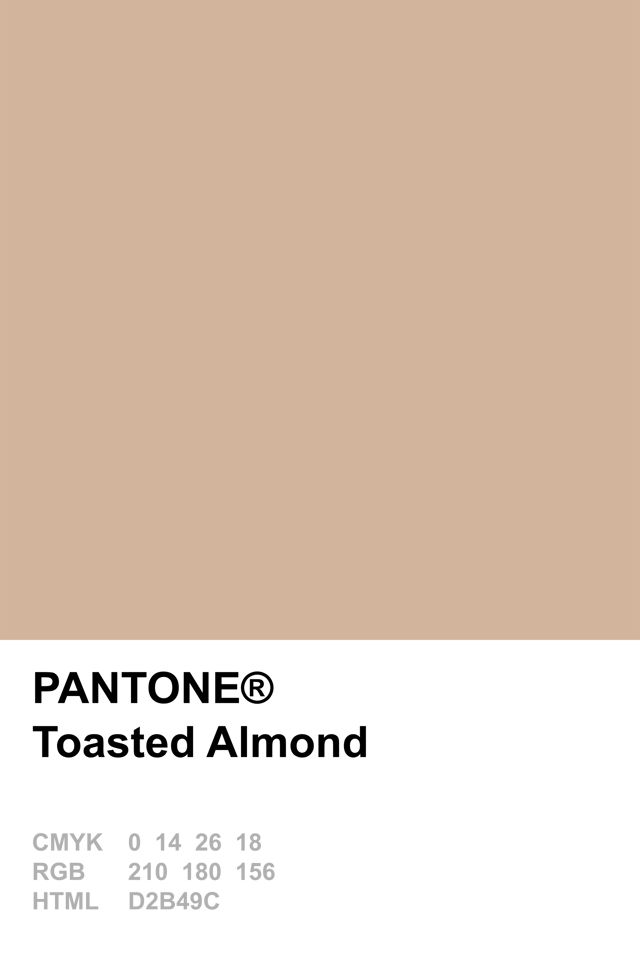 Pantone 2015 Toasted Almond