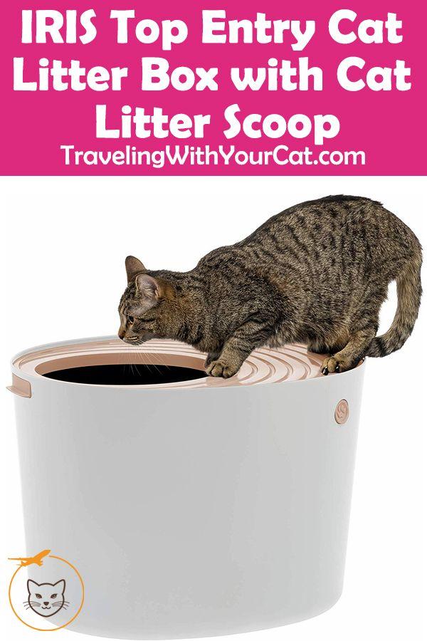Iris Top Entry Cat Litter Box With Cat Litter Scoop Cat Litter Cat Litter Box Litter Box