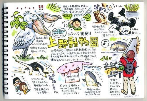 """パンダは午前だ!の画像:トキシンのイラストレーター的""""沖縄""""生活"""