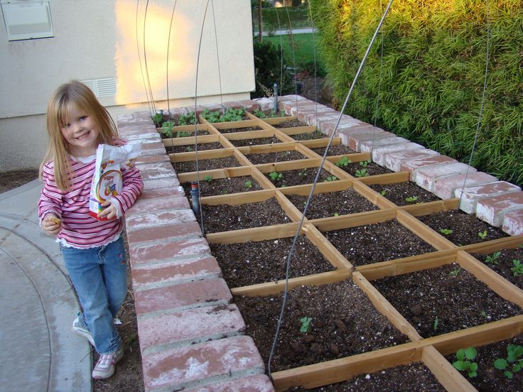 Vegetable patch divider veg patch pinterest gardens for Veggie patch design