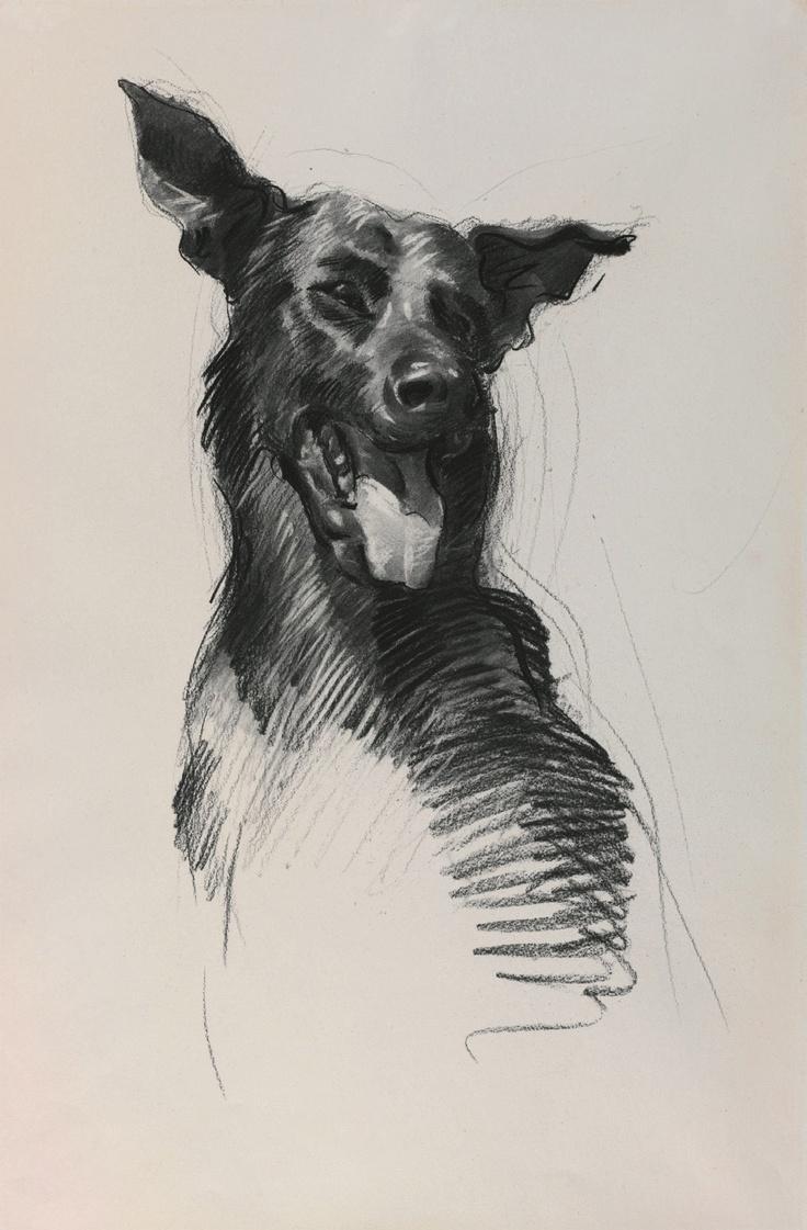 "McFadyen, Ken ""'Digger' Caesar, tracking team dog, 2 RAR 1968', charcoal, rubbing out on paper, 55.9 x 38.4 cm.  #kenmcfayden #vietnamoncanvas #sandrafingerlee #vietnamwar #warart #print #charcoal #sketch #dog #pet"