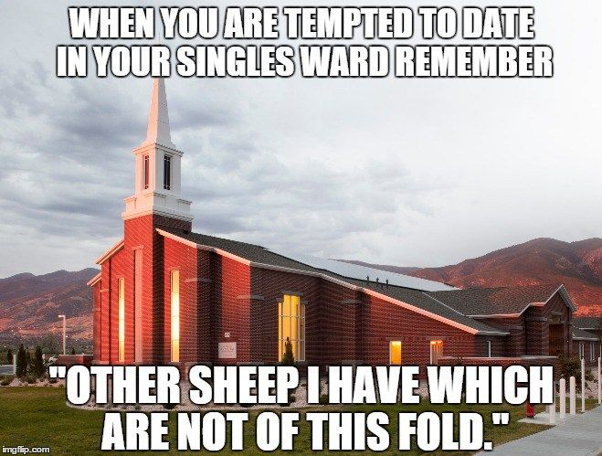 """When you are tempted to date in your singles ward remember """"Other sheep I have which are not of this fold."""""""