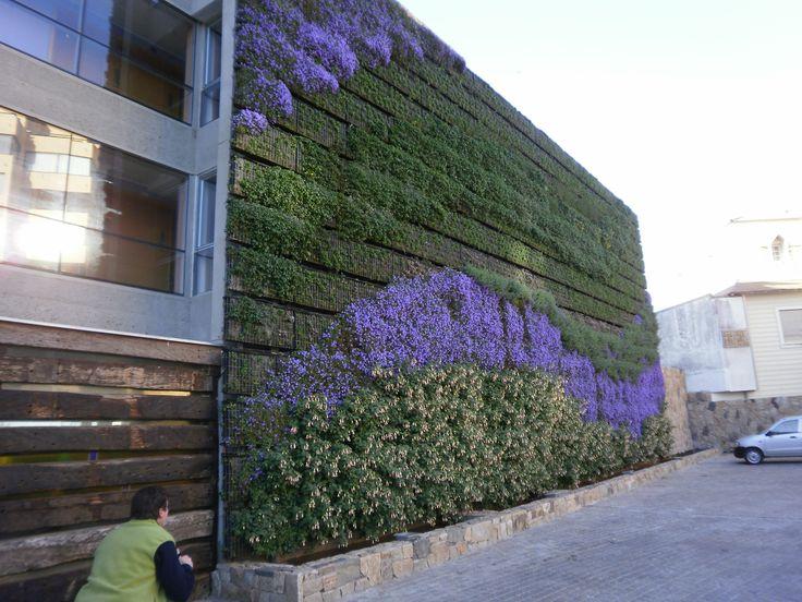 pared vegetal en el hotel Radisson de Chile.