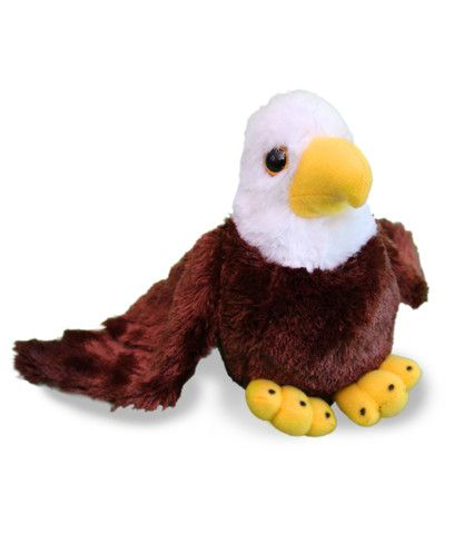 Koho the bald eagle stuffed animals are now in The Earth Rangers Shop and all purchases support environmental education  http://www.theearthrangersshop.com/collections/all-products