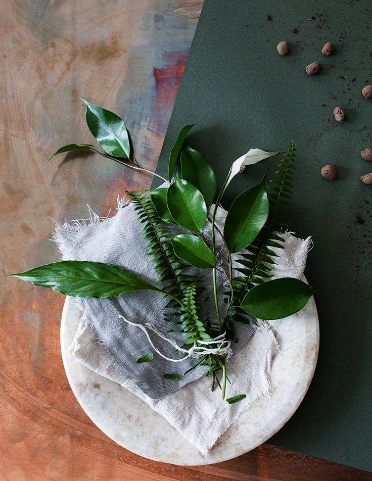 6 kreativa tips: Så gör du hemmet vackrare med gröna växter   1...