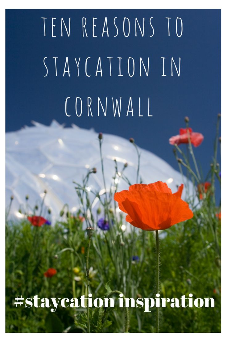 Ten reasons to staycation in Cornwall : From sandy beaches, hidden coves, bracing walks, gnarly waves and awesome attractions. Staycation inspiration.