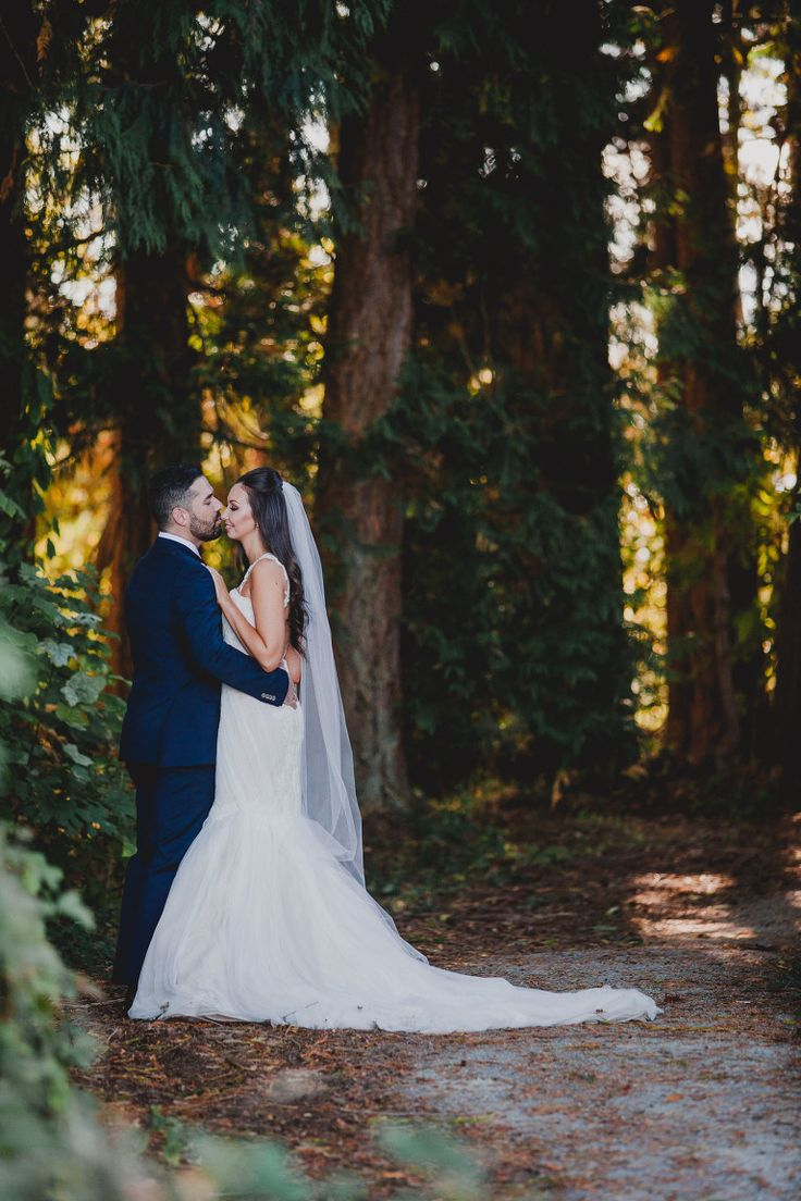 Wedding Photos at Sea Cider Victoria BC Photographer | Old growth forest photos of the bride and groom, wedding formal photos on Vancouver Island BC | Victoria Wedding Photographers and ideas