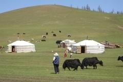 Mongolei - Bessere Reisen, besser finden: www.zielegal.de