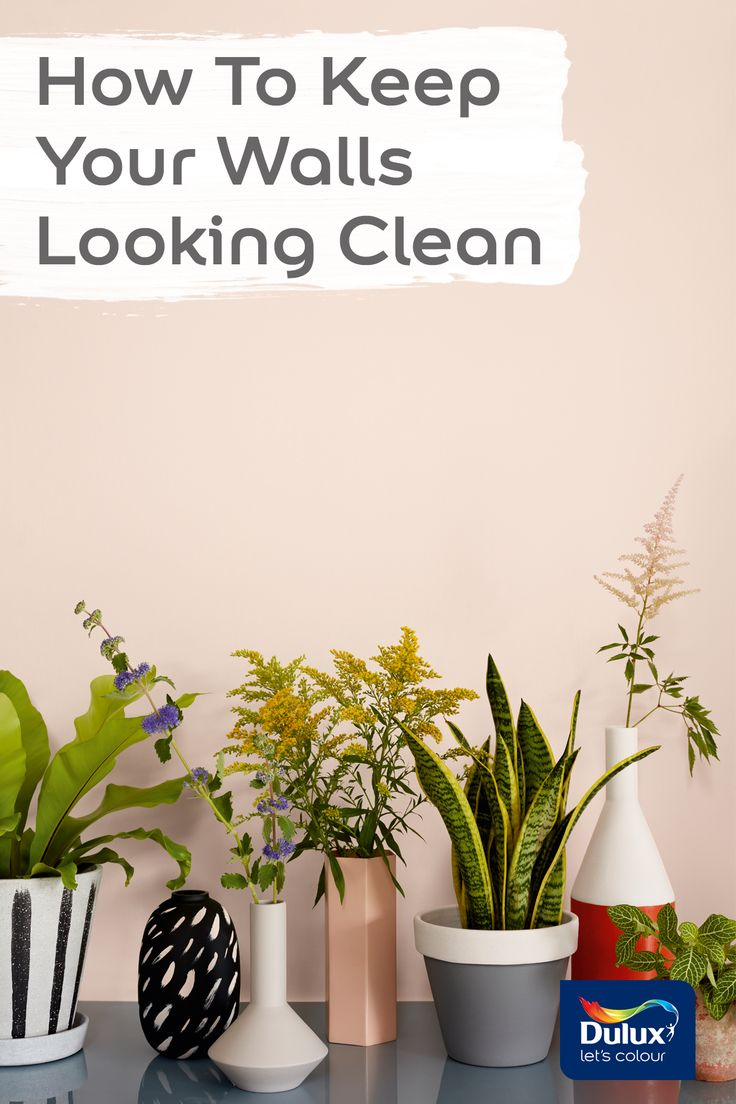 Learn how to keep your walls looking pristine.