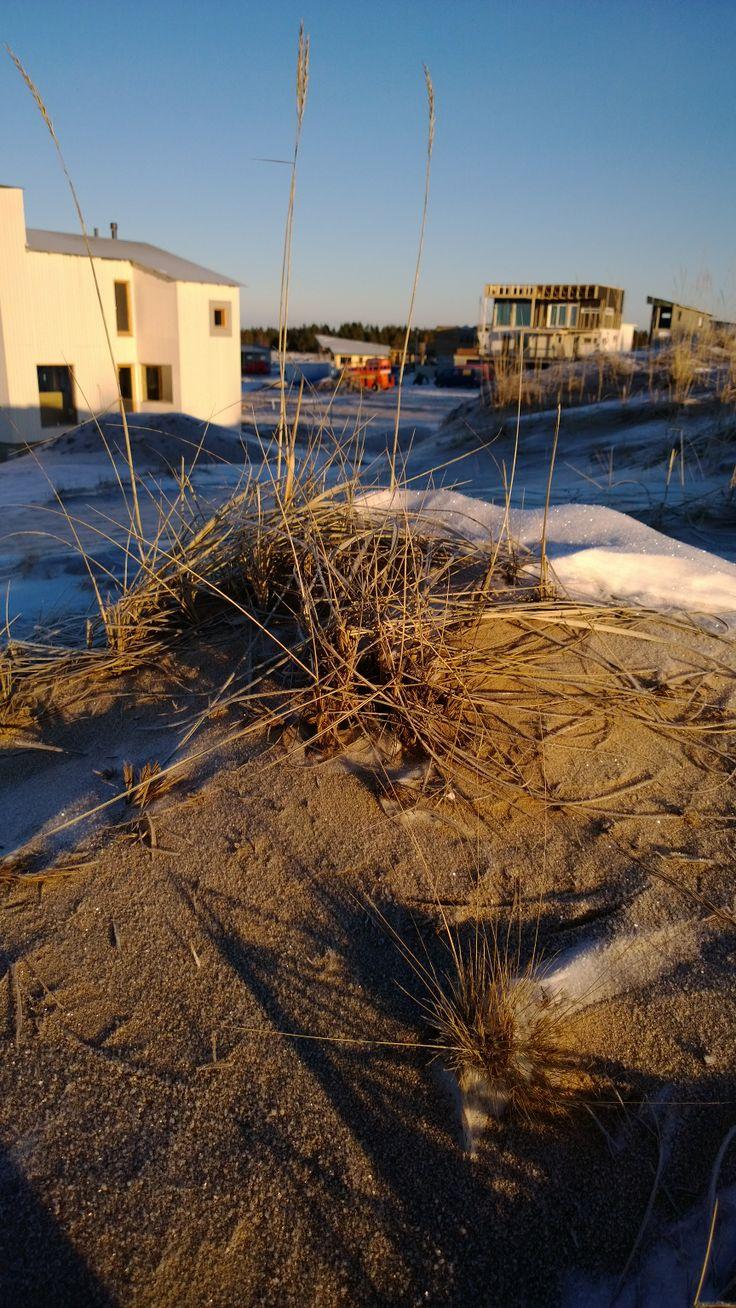 Snow and sand, this is how the January weather is like in Holiday Home Fair worksite, Kalajoki Finland. Hiekkaa ja lunta Loma-asuntomessualueella talvella 2014.