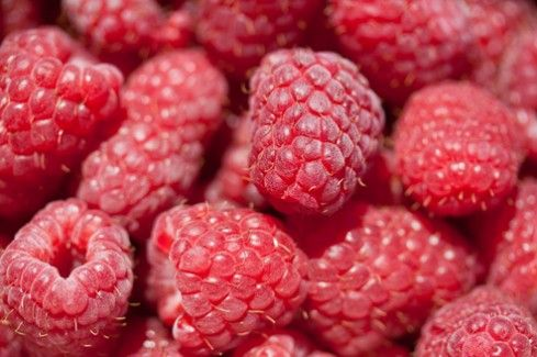 Poland – no. 1 raspberry producer in the world | Link to Poland