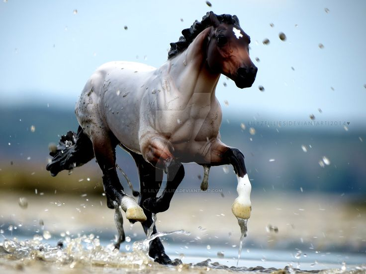 1000+ Images About Breyer Horse On Pinterest