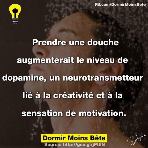 Prendre une douche augmenterait le niveau de dopamine, un neurotransmetteur lié à la créativité et à la sensation de motivation.