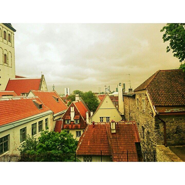 Over the red brick roofs. #Tallinn #Estonia #Travel #medieval