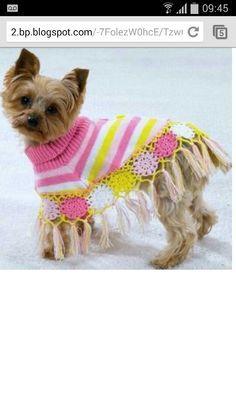 ropa para perros tejida al crochet paso a paso - Buscar con Google