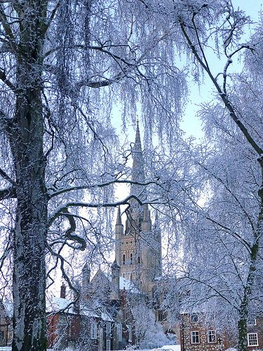 Snow in Norwich Cathedral, Norfolk, England