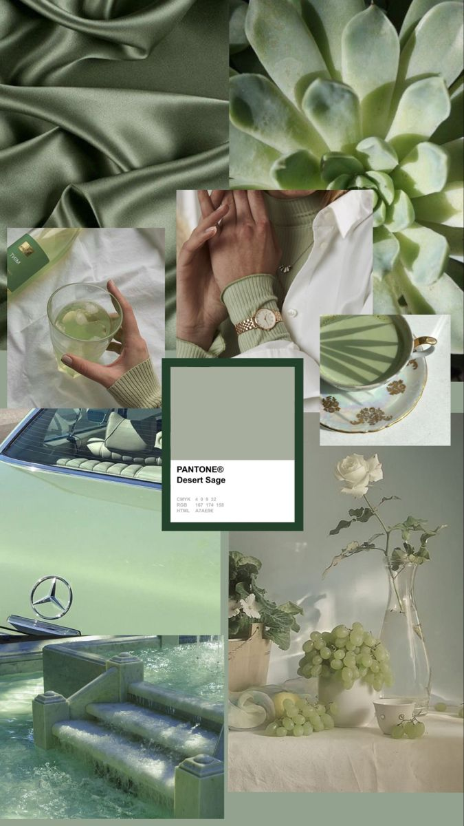 Pin by Sara's_Aesthetics on collages i made   Sage green ...
