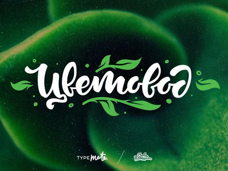 Cvetovod logo by Typemate